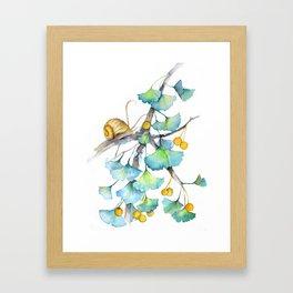 Ginkgo and A Snail Framed Art Print