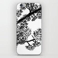 Cherry Blossom #6 iPhone & iPod Skin