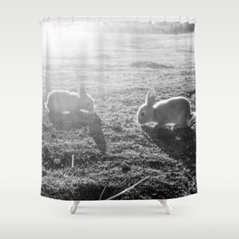 Bunny // Black and White Cute Nursery Photograph Adorable Baby Bunnies in the Field Shower Curtain