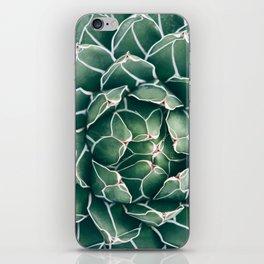 Succulent bloom II iPhone Skin