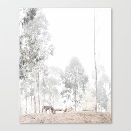 Zebras - through the mist Canvas Print