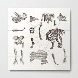 Puzzle bones Metal Print
