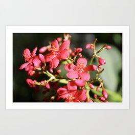 Beautiful Floral Art Print