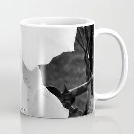 cherokee rose Coffee Mug