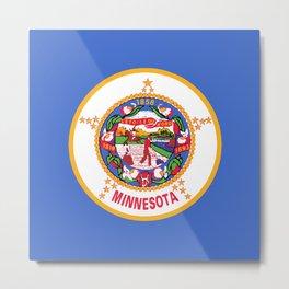 Minnesota State Flag Metal Print
