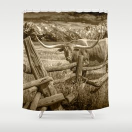 Texas Longhorn Steer by an Old Wooden Fence in Sepia Tone Shower Curtain