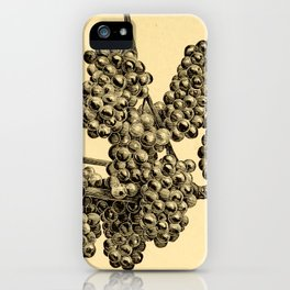 American grape growing and wine making (1885) iPhone Case