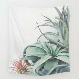 Air Plant Collection Wall Tapestry