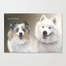 Sven & Buddies; Sheltie & Samoyed Portrait Canvas Print