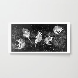 Dillonauts Metal Print