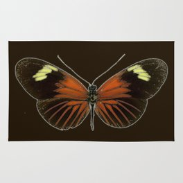 Untitled Butterfly Rug