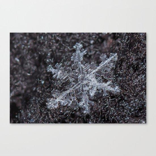 Sowflake Closeup #2 Canvas Print