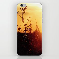 Illume iPhone & iPod Skin
