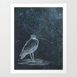 Eurasian Curlew Art Print