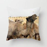 israel Throw Pillows featuring Israel Camels - Negev Desert by Rachel J