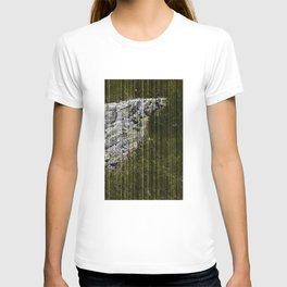 STONES LICHEN NUGGET T-shirt