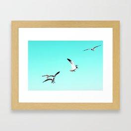 sun chips and sea gulls Framed Art Print