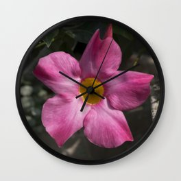 Longwood Gardens - Spring Series 135 Wall Clock