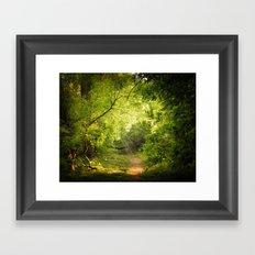 The Secret Path Framed Art Print