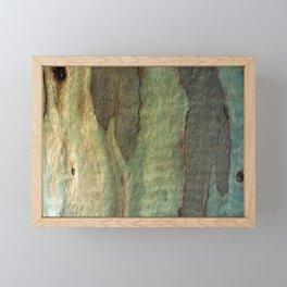 Eucalyptus Tree Bark 6 Framed Mini Art Print