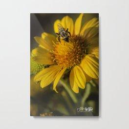 Gathering Pollen Metal Print