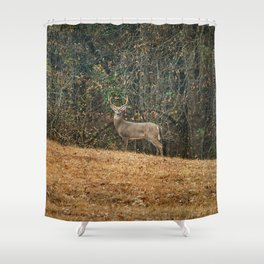 Buck At Pinson Mounds Shower Curtain