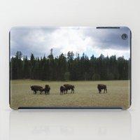 buffalo iPad Cases featuring Buffalo  by Taylor Palmer