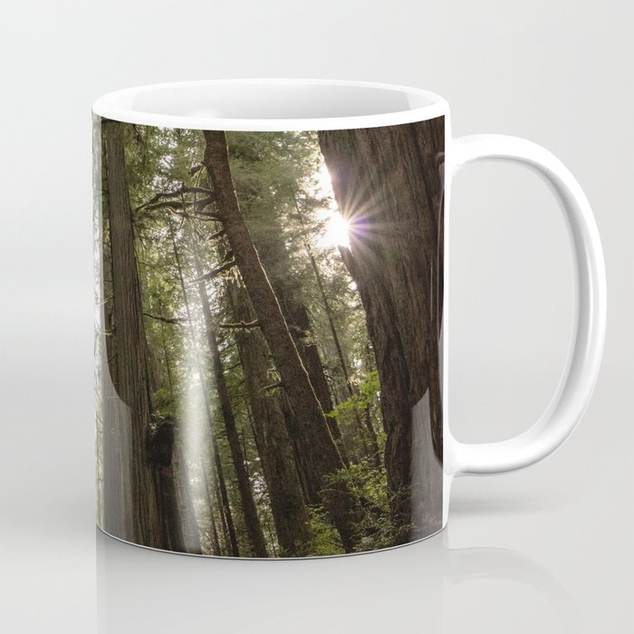 Redwoods Make Me Smile - Nature Photography Coffee Mug