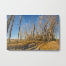 Downstream Campground, North Dakota 24 Metal Print