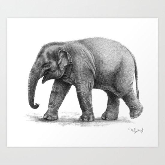 Elephant Baby G092 Art Print