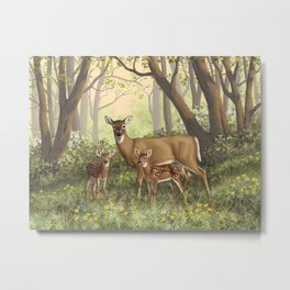 Whitetail Doe and Cute Twin Fawns Metal Print