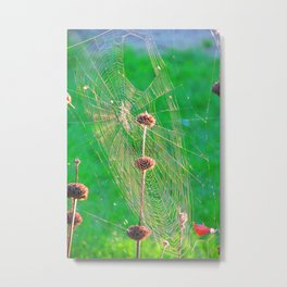 Spiderweb Takeover II Metal Print