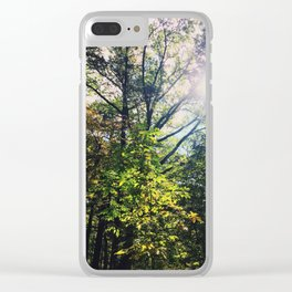 Shining down onto thee Clear iPhone Case