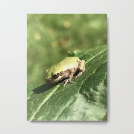The Meaning of Tiny Metal Print