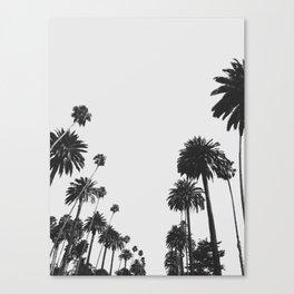 Palm Spring California, Palms Canvas Print
