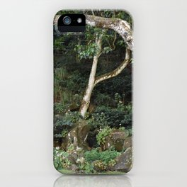Waimea Valley Oahu Island  Hawaii iPhone Case
