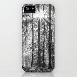 Beech Wood Sunrise iPhone Case