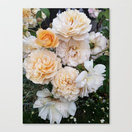 Flowering Beauty Canvas Print