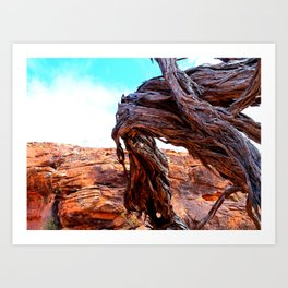 Patterns of the Outback Art Print