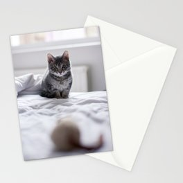 Before the pounce Stationery Cards