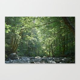 Elk Creek in Tillamook Oregon Canvas Print