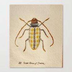Urban Bug #3 Canvas Print