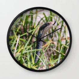 Black Garden Snake  Wall Clock