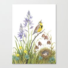 Morning in the Meadow Canvas Print