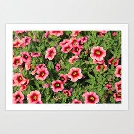 Red Pink Flowers Art Print