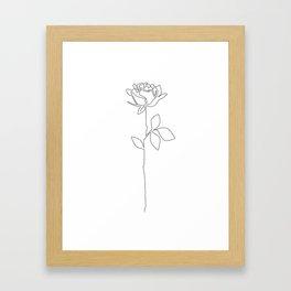 Fragile Rose Framed Art Print