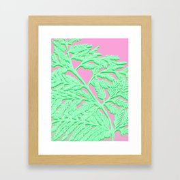 Fern Fronds IV Framed Art Print
