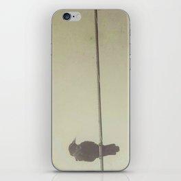 Perch iPhone Skin
