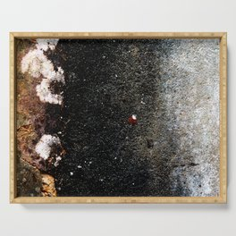 Abstract wall grey painting Serving Tray