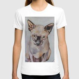 Artwork, animal, oilpainting. Sphynx. Cat T-shirt
